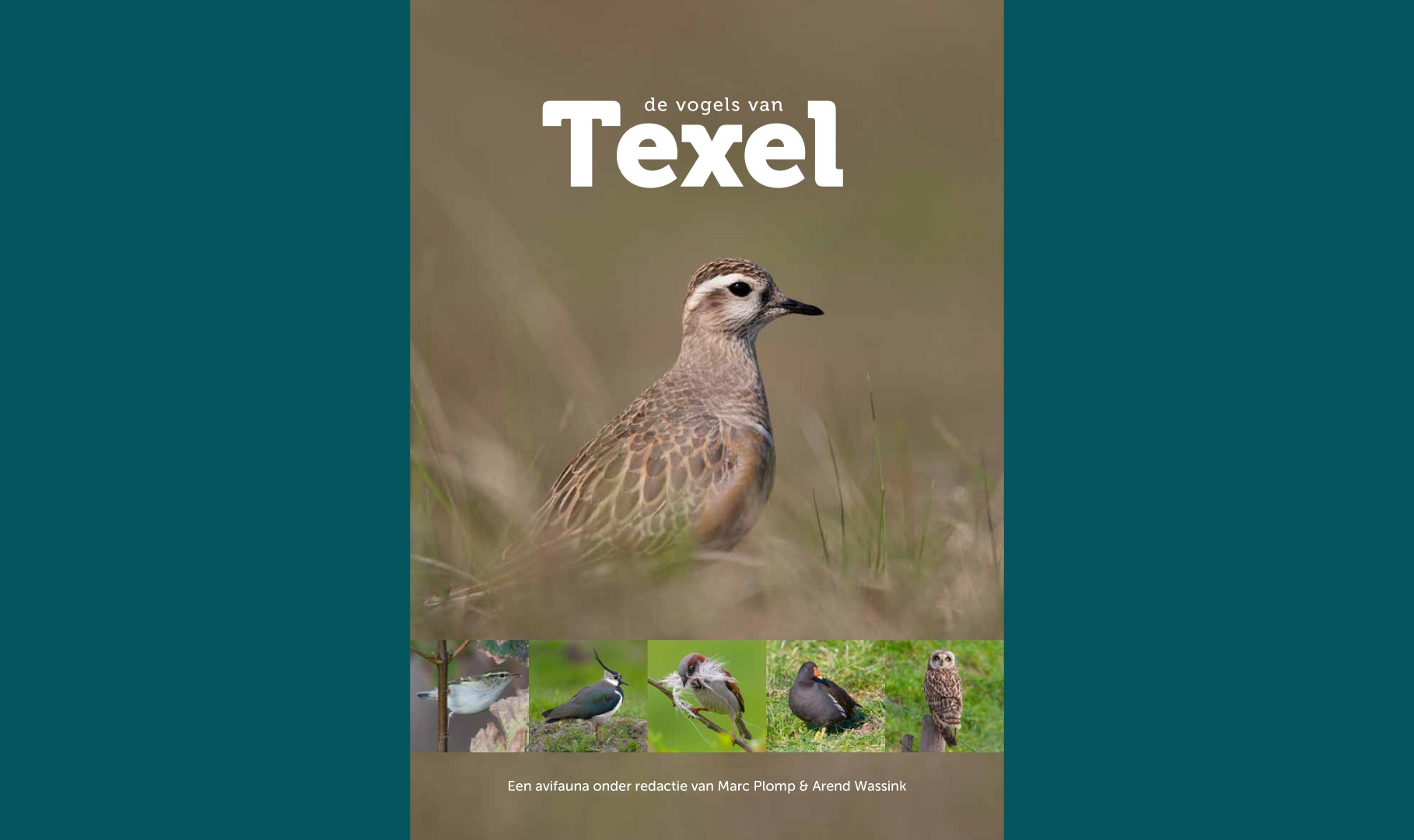 DIGITAL AVIFAUNA OF TEXEL